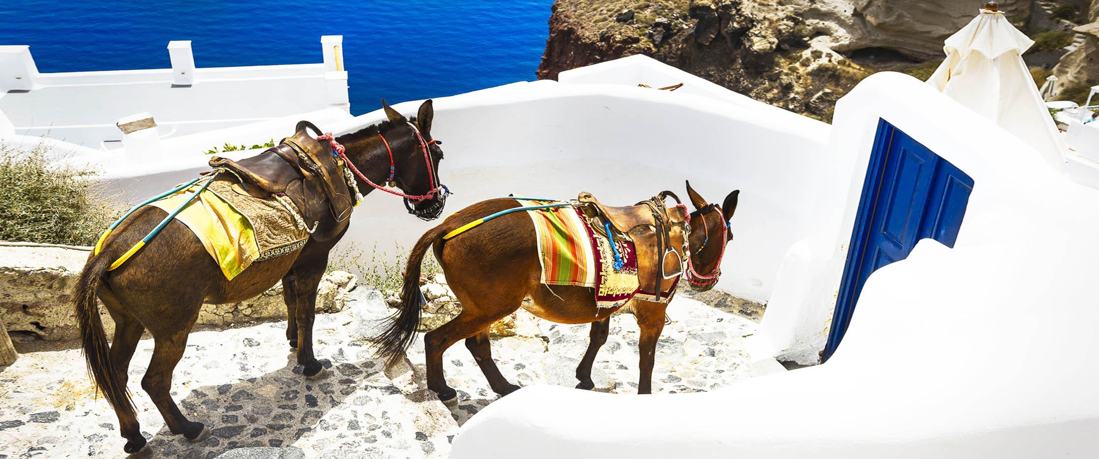 grece2-144
