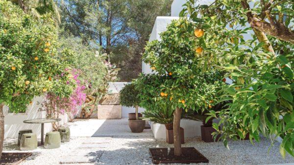 Location de maison vacances, Gemma, Onoliving - Espagne, Baléares, Ibiza