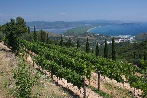 Location de Maison de Vacances - Villa Miracole - Onoliving - Italie - Toscane - Maremme