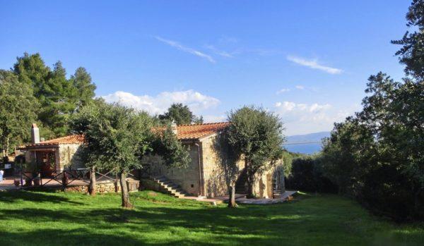 Location de Maison de Vacances - Villa Tala - Onoliving - Italie - Toscane - Maremme
