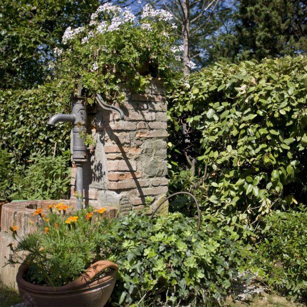 Location de Maison de Vacances - La Fonte - Onoliving - Italie - Toscane - Pise