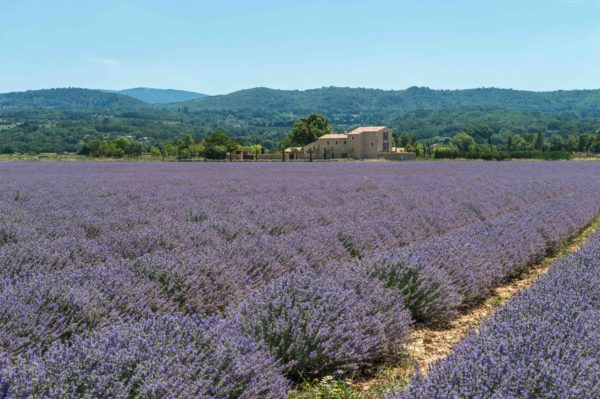 Location de maison Onoliving, France, Provence - Bonnieux