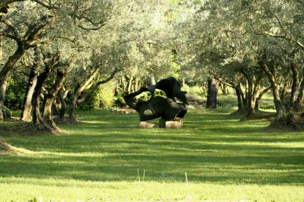 Location Maison de Vacances, Onoliving, Mas Alpia, France, Provence - Saint Rémy de Provence