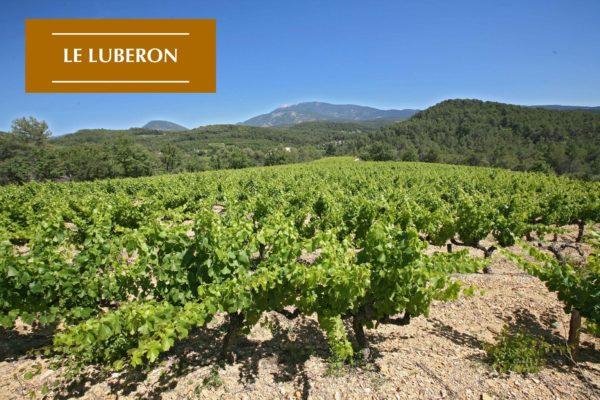 Le Luberon-Carnet de Voyage-Location Maison de Vacances Provence-Onoliving