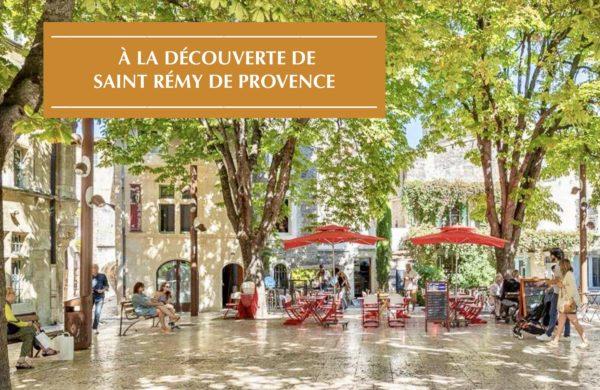 Saint Rémy de Provence-Location Maison de Vacances en France-Onoliving